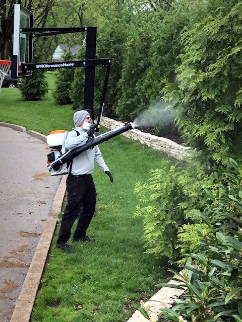 pest control spraying
